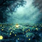 reconnaître signes éveil spirituel